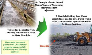 How the EPA Faked the Entire Science of Sewage Sludge Safety: A Whistleblower's Story