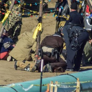 Guards for North Dakota pipeline could be charged for using dogs on activists