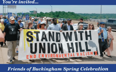 Determining Disparate Impacts in Environmental Justice Communities: Does Friends of Buckingham v. State Air Pollution Control Board Provide the Roadmap?